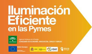 Programa Iluminación Eficiente en Pymes