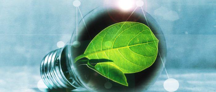 Servicios energéticos, electricidad, ESE, energía, LED, ahorro,
